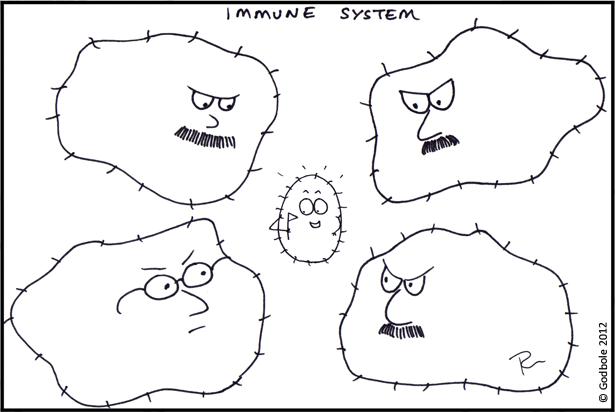 Immunsystemet